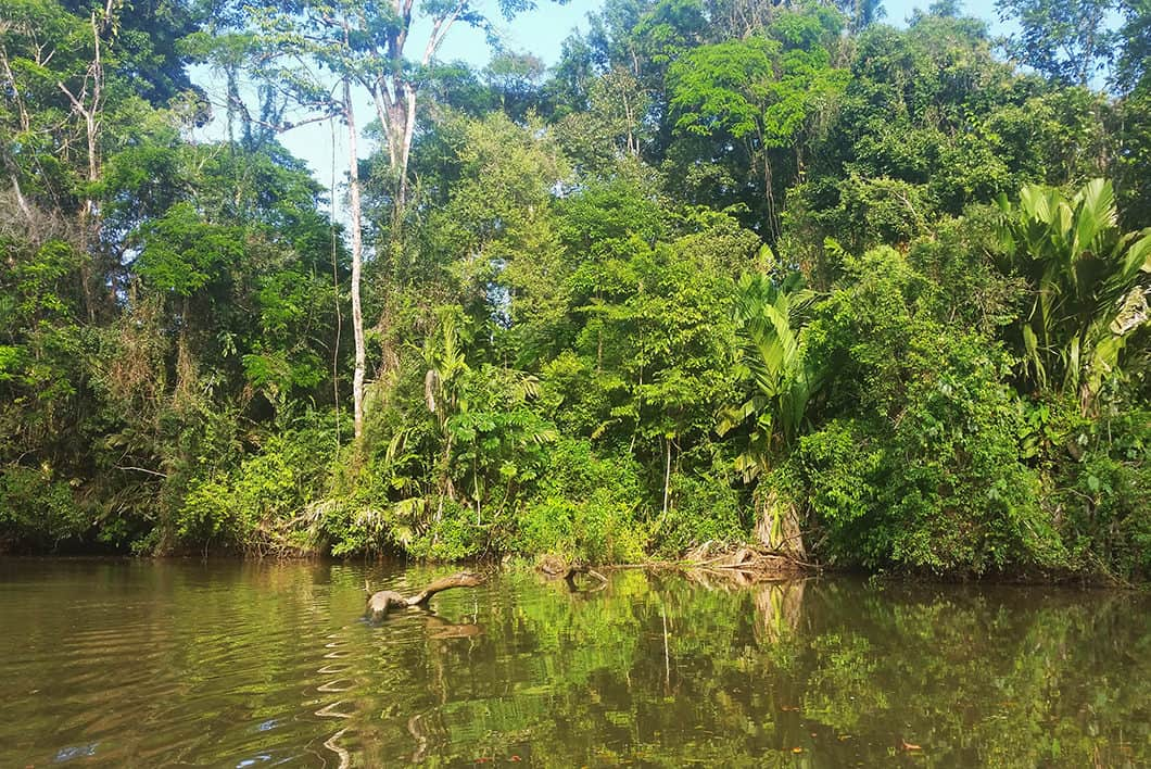 Guide du Costa Rica, visiter Tortuguero