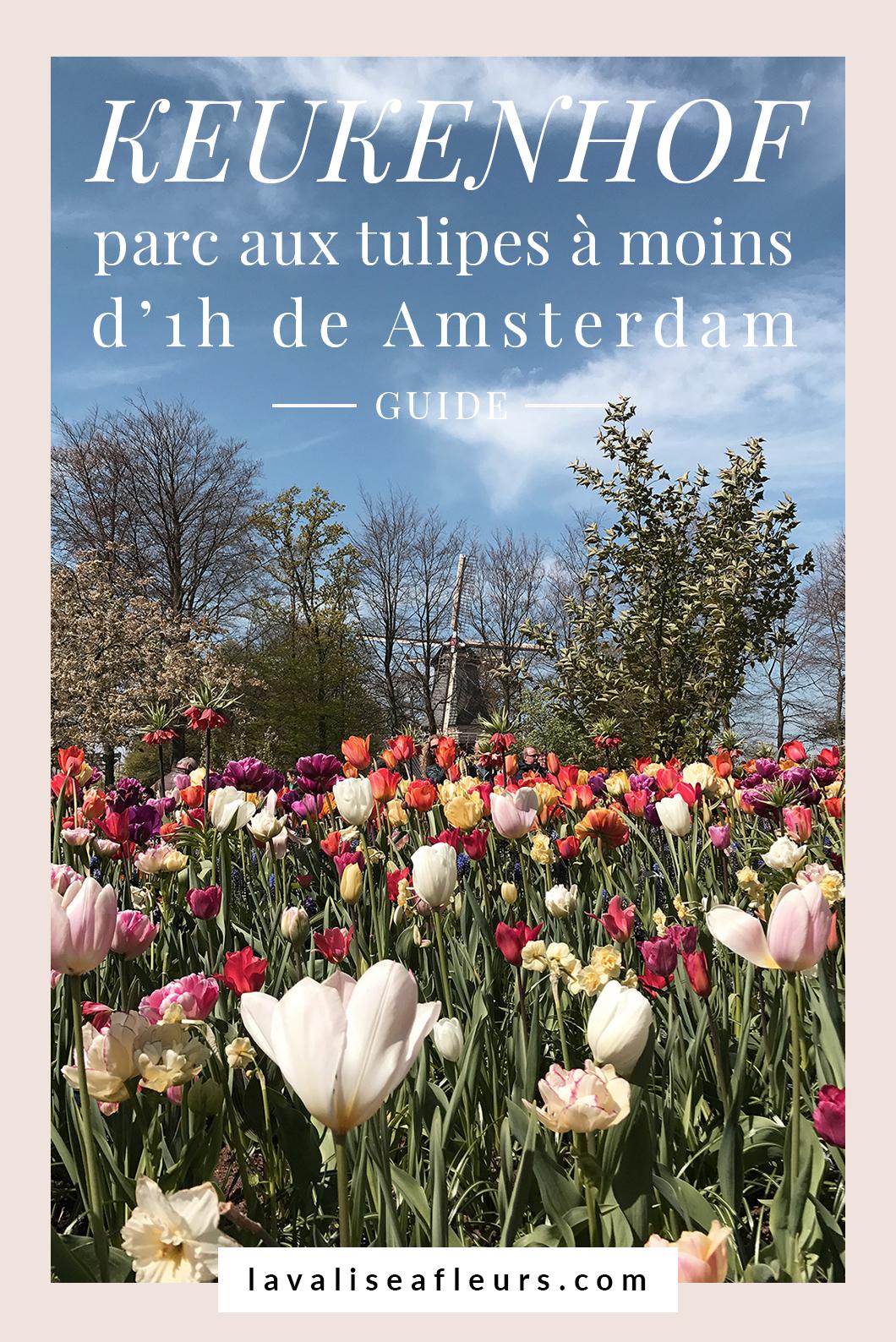 Keukenhof, le parc aux tulipes à moins d'une heure d'Amsterdam