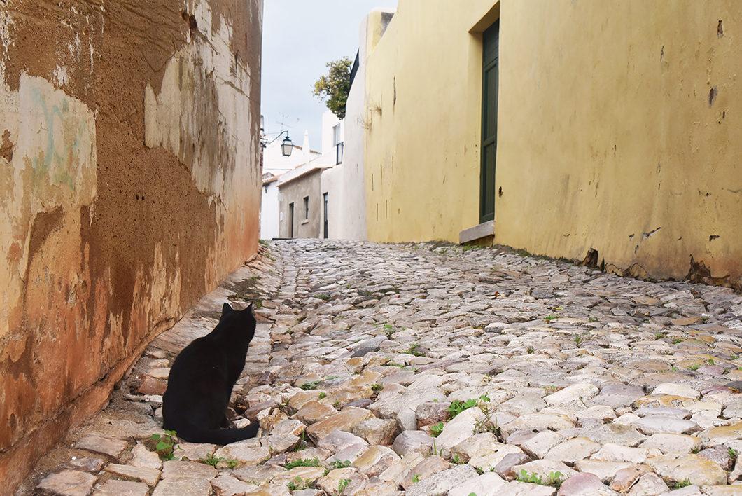 Les jolies rues de Silves