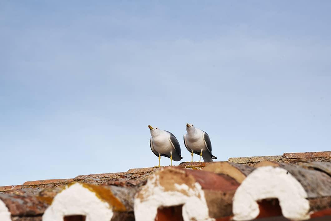 Les plus beaux points de vue de l'Algarve - Nossa Senhora Da Rocha