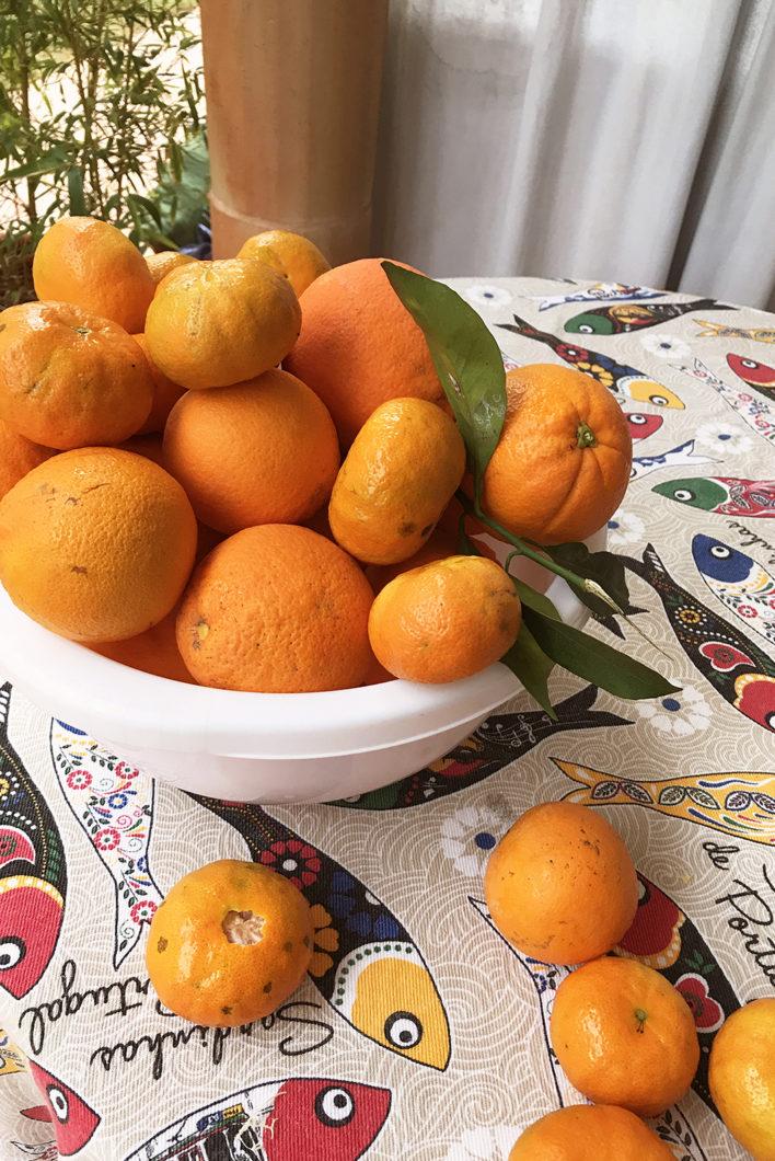Les oranges du Portugal