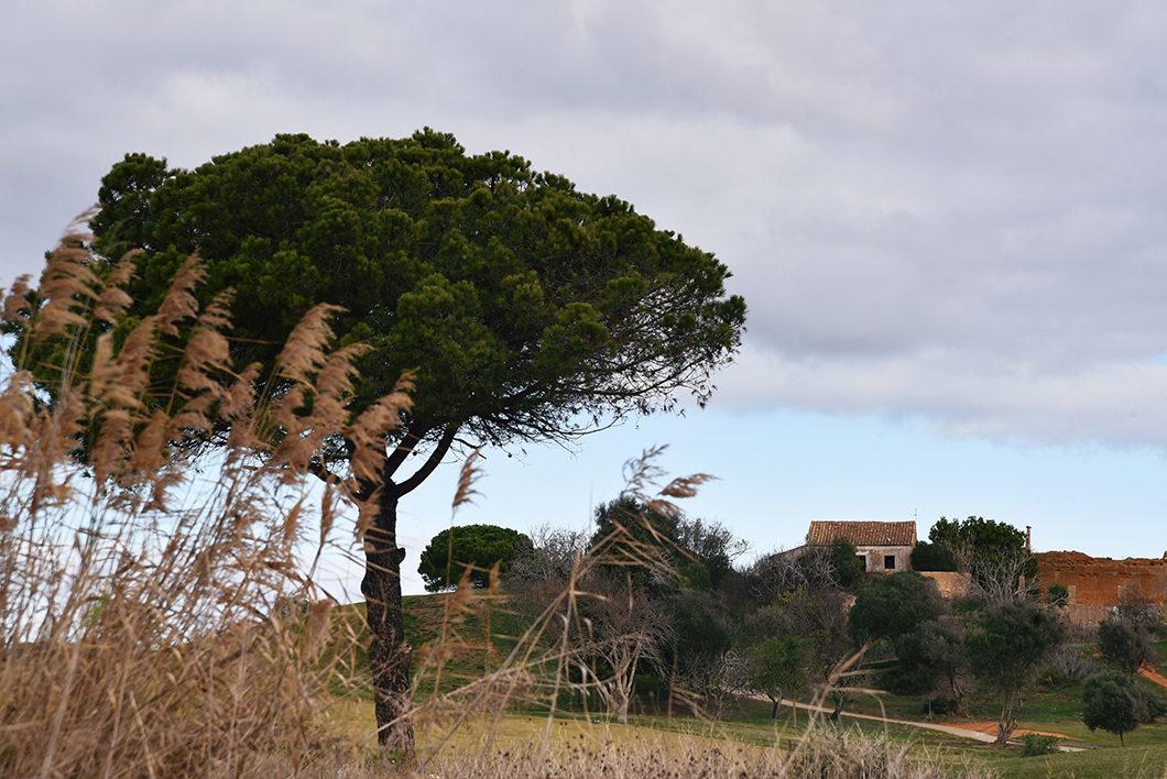 Aller à Lagos en Algarve