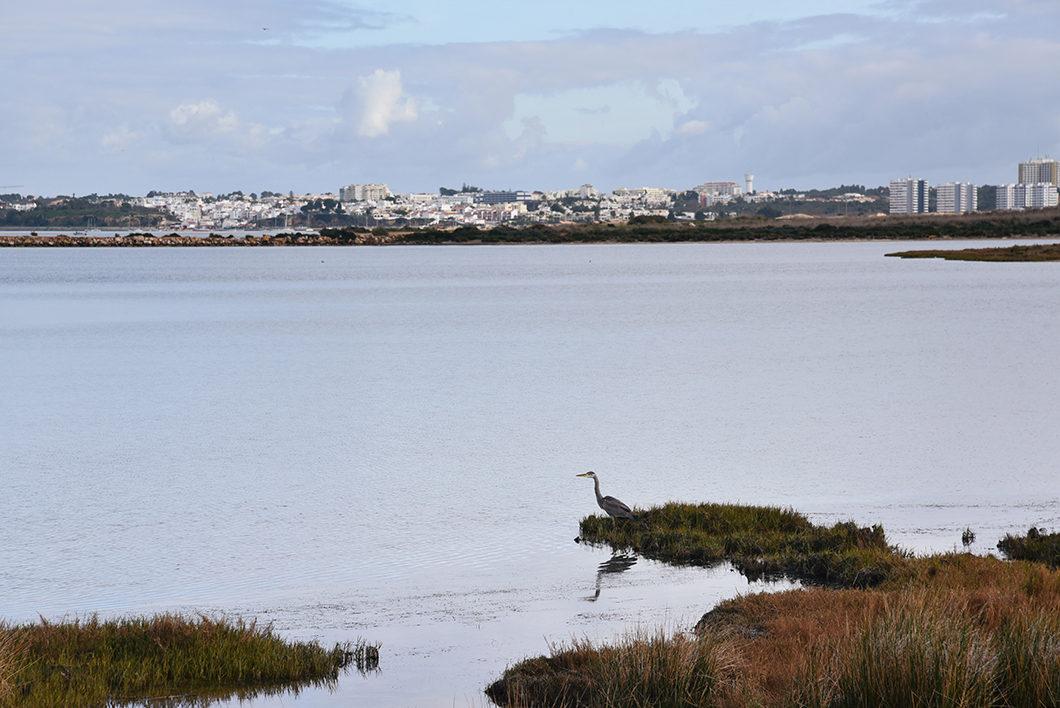 Les étangs de Lagos en Algarve