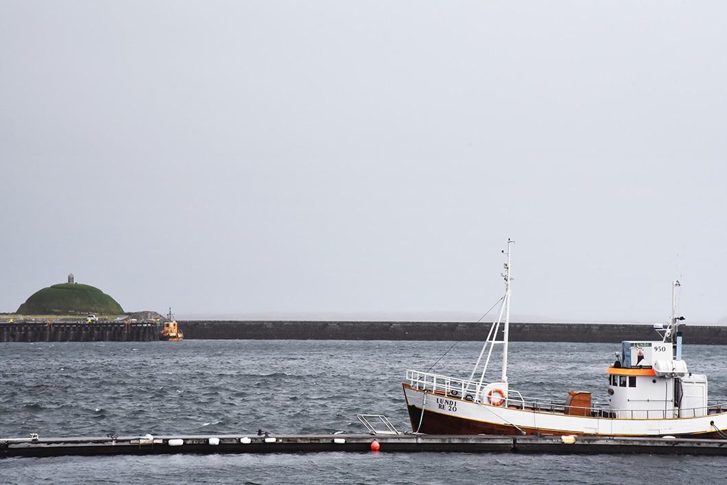 Flea Market - Reykjavik