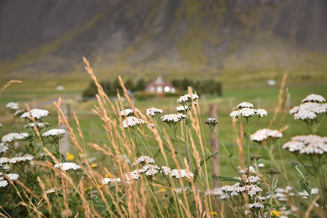 Akranes - Islande