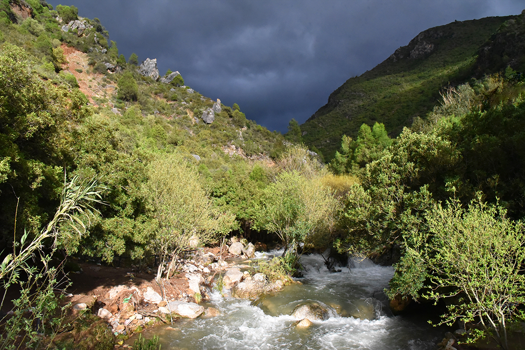 Parc national de Talassemtane - Road trip Maroc du nord