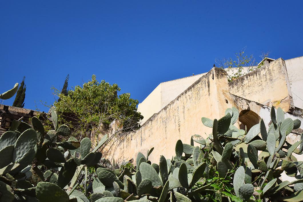 Visiter le Palais El Glaoui à Fès