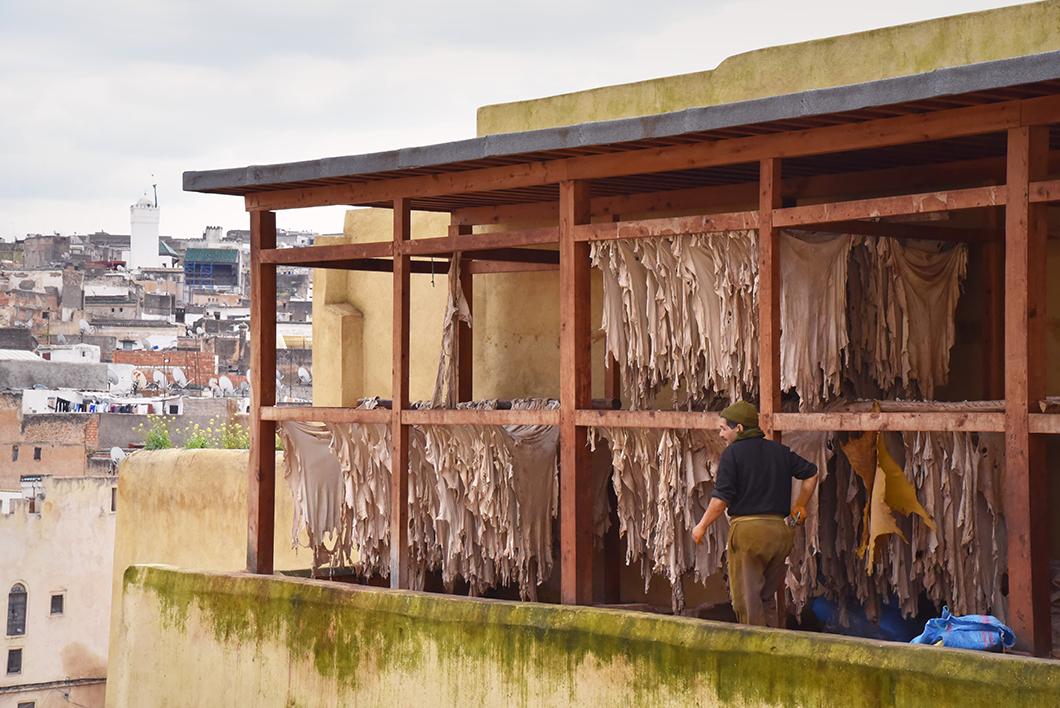 Visiter la Tannerie de Chouara à Fès