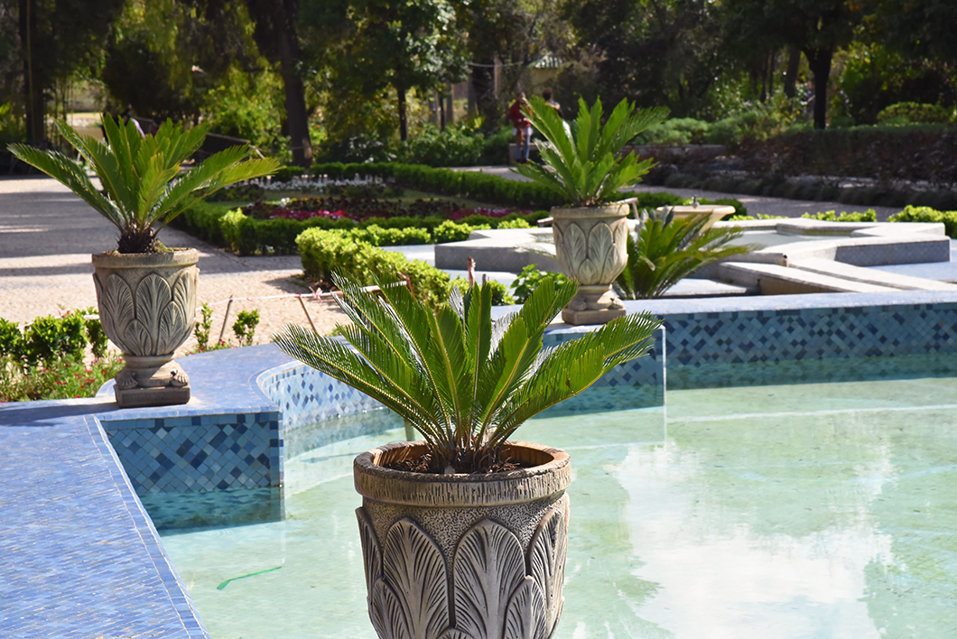 Visiter le Jardin Jnan Sbil à Fès