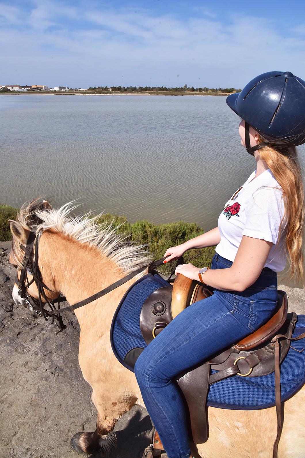Balade à cheval, top des activités en Camargue