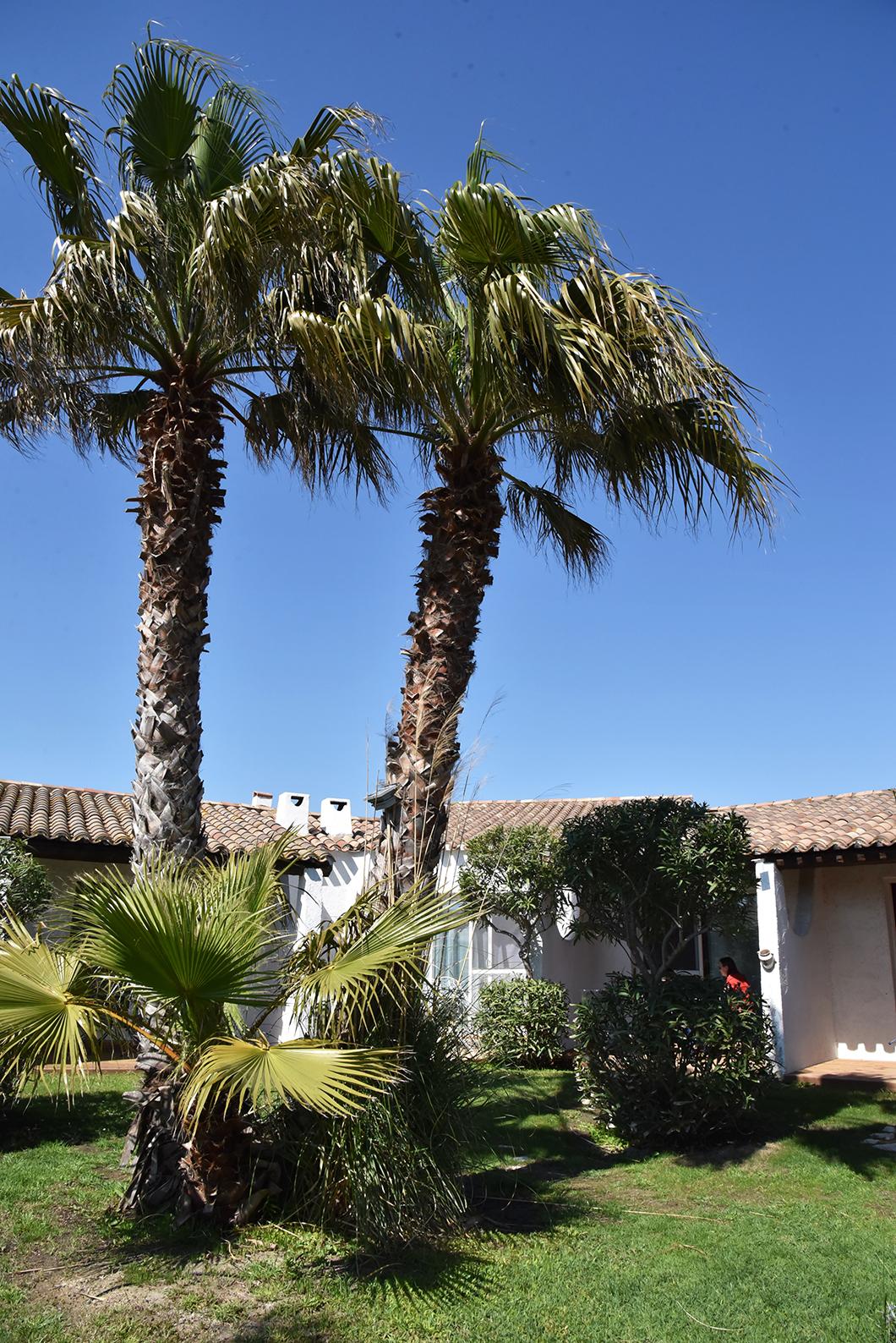 Hôtel la Tramontane - Un week end en Camargue