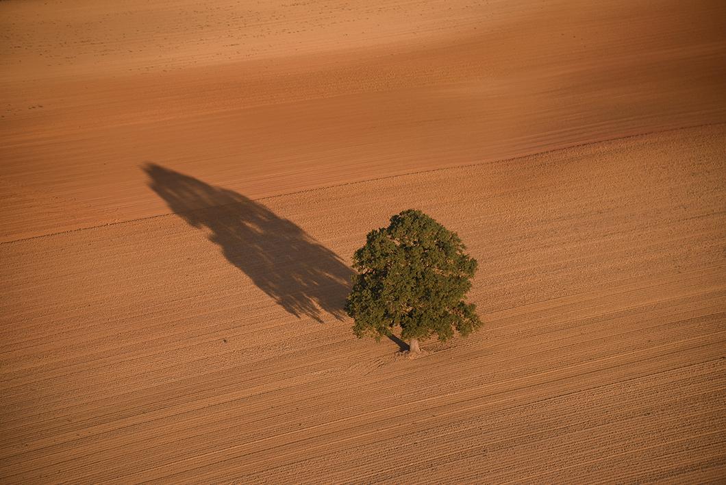 Lever de soleil en Montgolfière à Sancerre