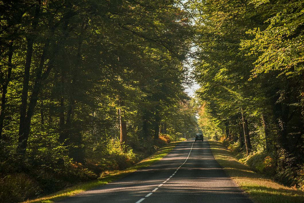 Road trip sur les routes de Menetou-Salon