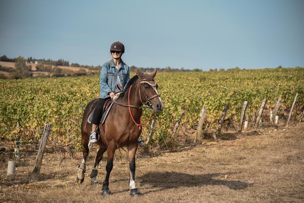 Balade à cheval à Menetou-Salon