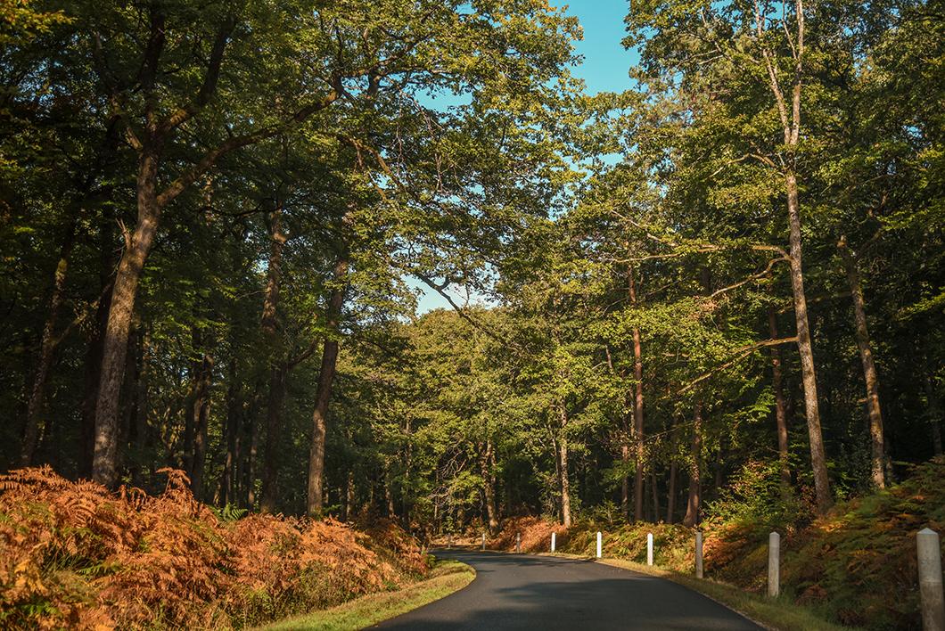 Road trip dans le Berry
