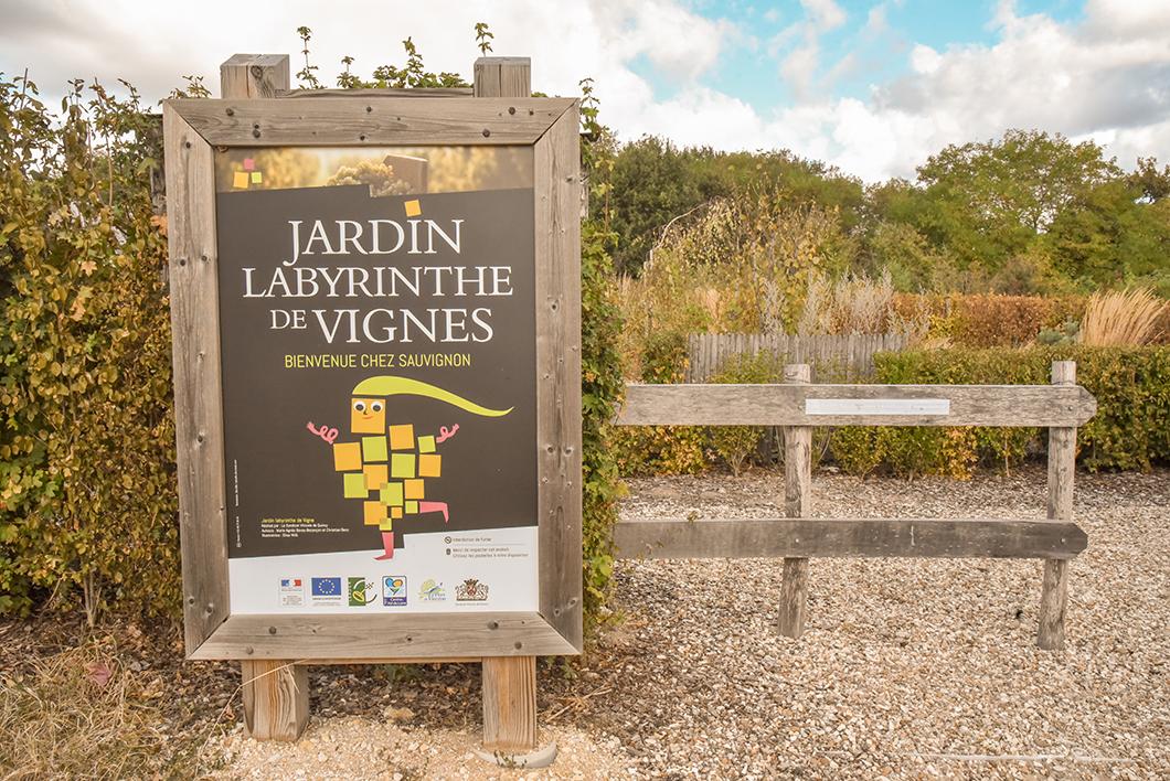 Le jardin labyrinthe de vignes - Quincy