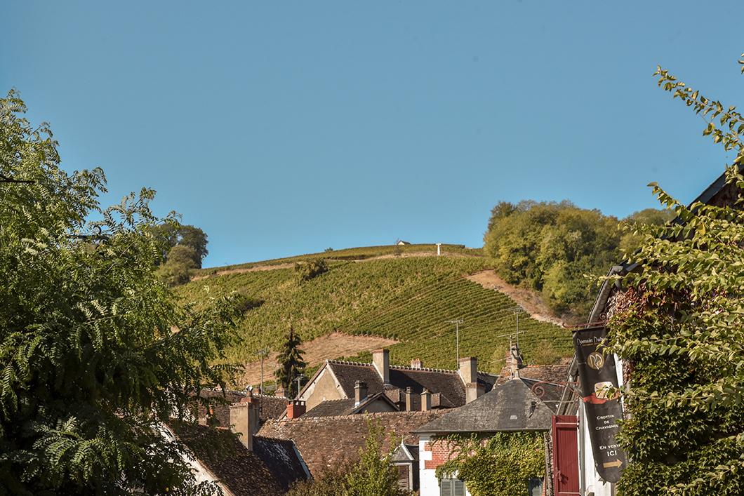 Les Mont Damnés à Chavignol