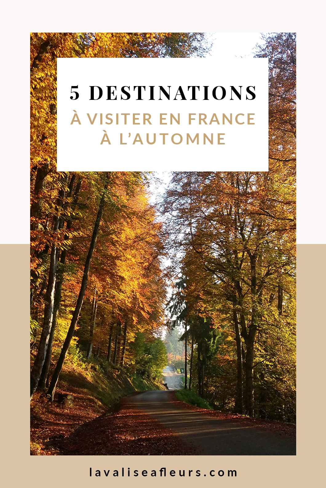 Guide de France, 5 destinations à visiter en automne