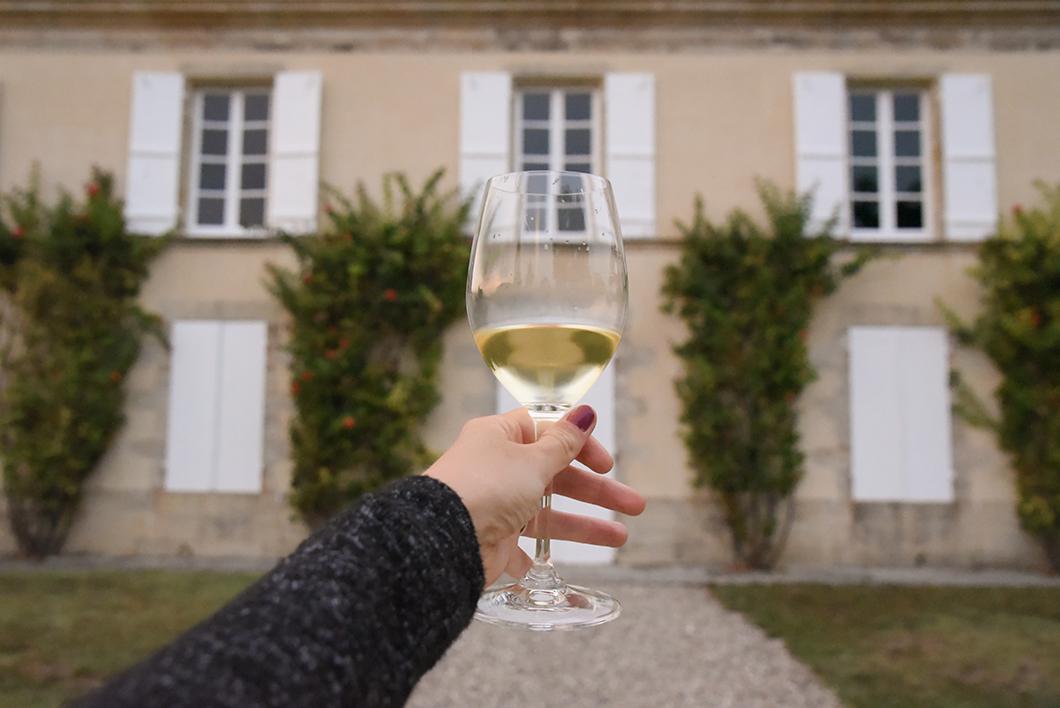 Dégustation de vin au Château Guiraud - Route des Vins de Bordeaux en Graves et Sauternes