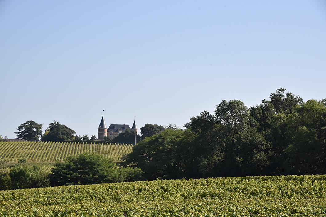 Route des Vins de Bordeaux en Graves et Sauternes