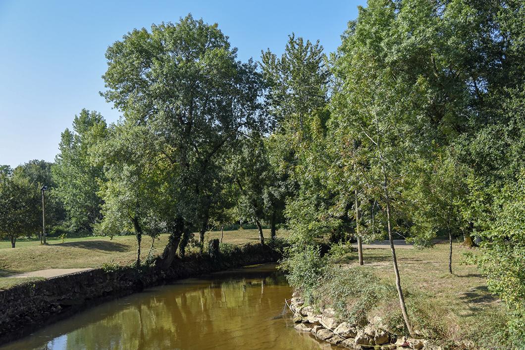 Canoë sur le Ciron - Activité sur la Route des Vins de Bordeaux