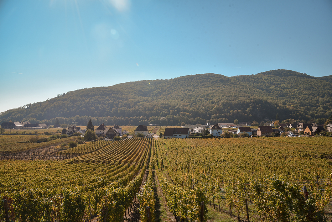Hunawihr - l'Alsace en vélo