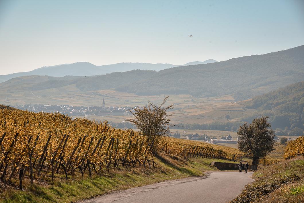 L'Alsace en vélo