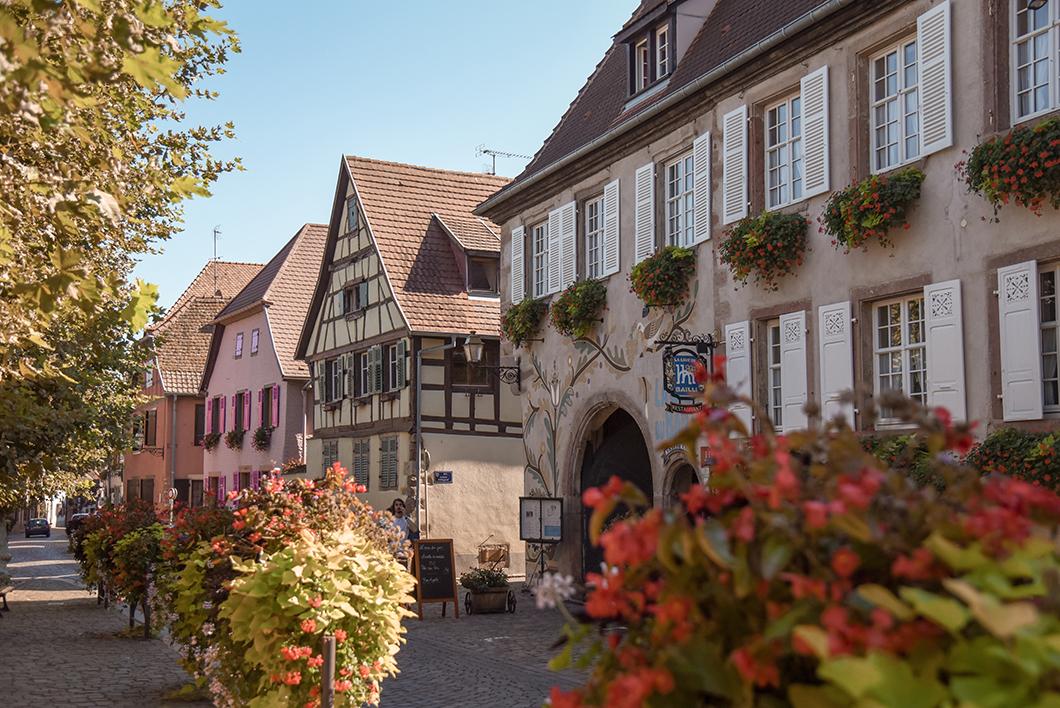 Bergheim - l'Alsace en vélo