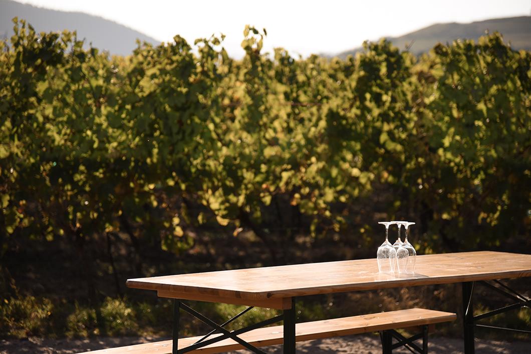 Domaine Achillée - route des vins d'Alsace