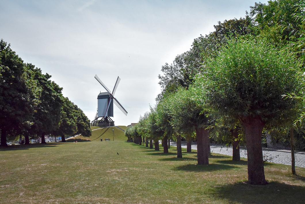 Promenade au Moulins Saint Jean (Sint-Janshuis Mill), incontournable à Bruges