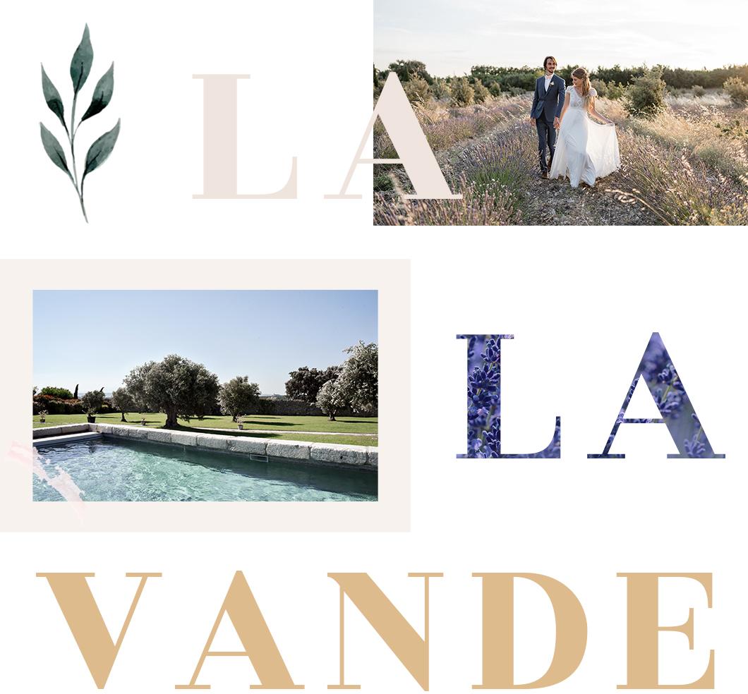 mariage dans la lavande en Provence