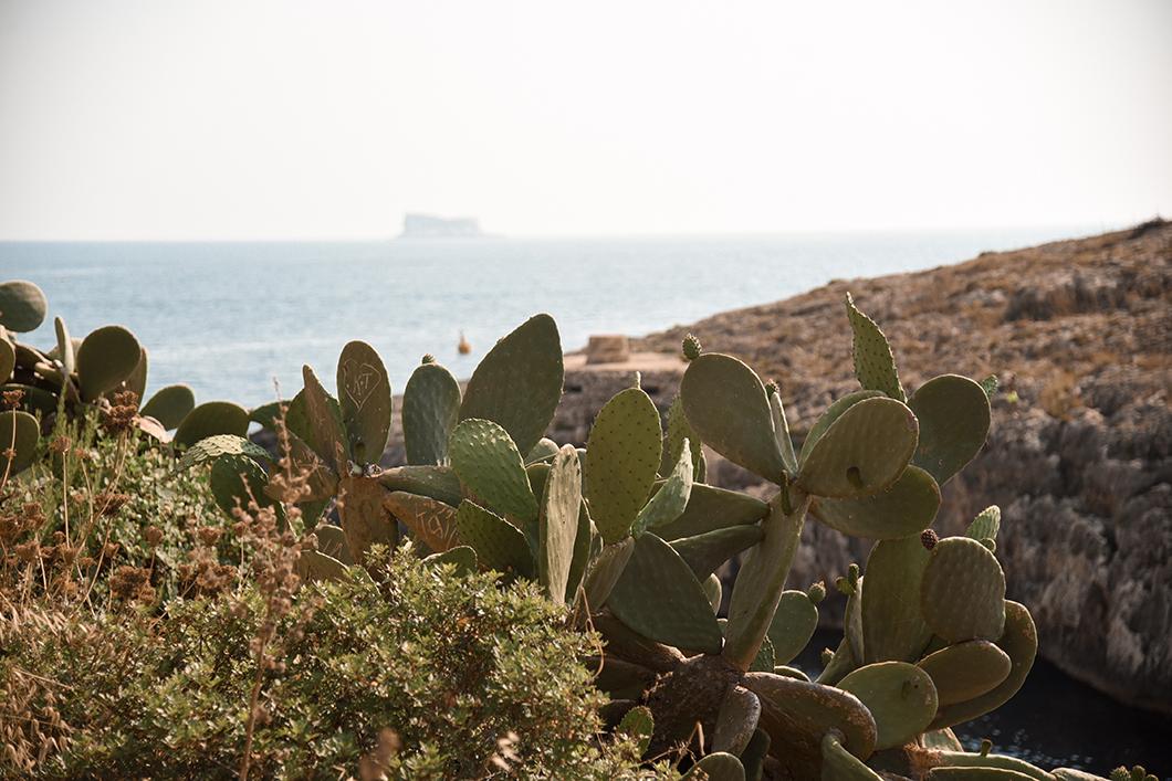 Découvrir les plages de Malte
