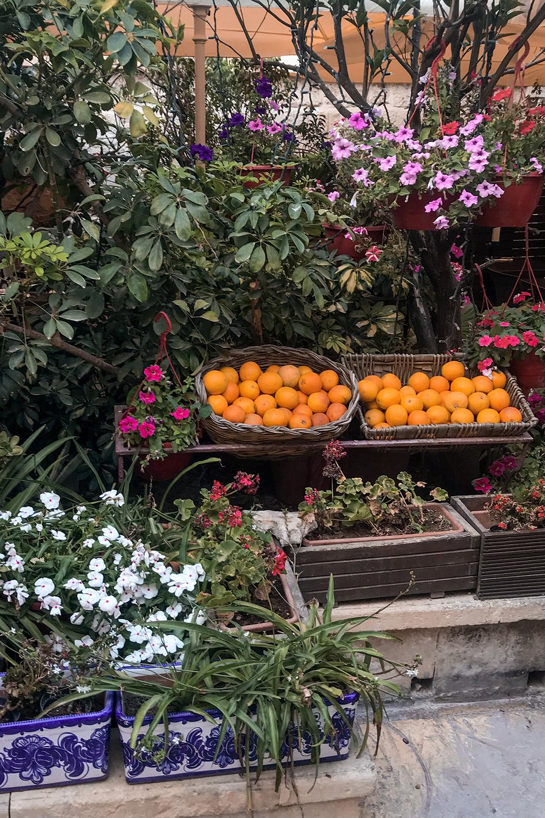 Les couleurs de Mdina à Malte