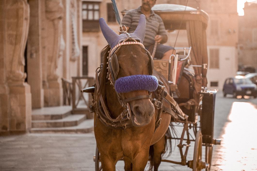 Les rues de Mdina à Malte