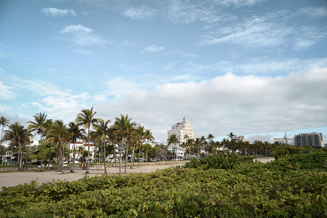 Lummus park, South Beach