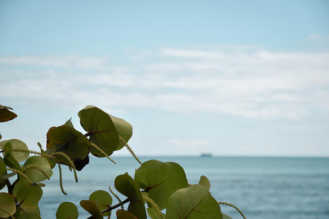 Se baigner à Miami Beach