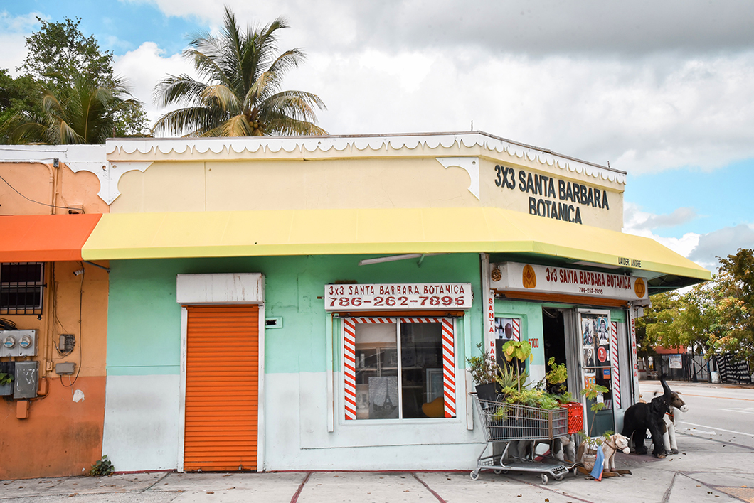 Botanica de Little Haiti à Miami