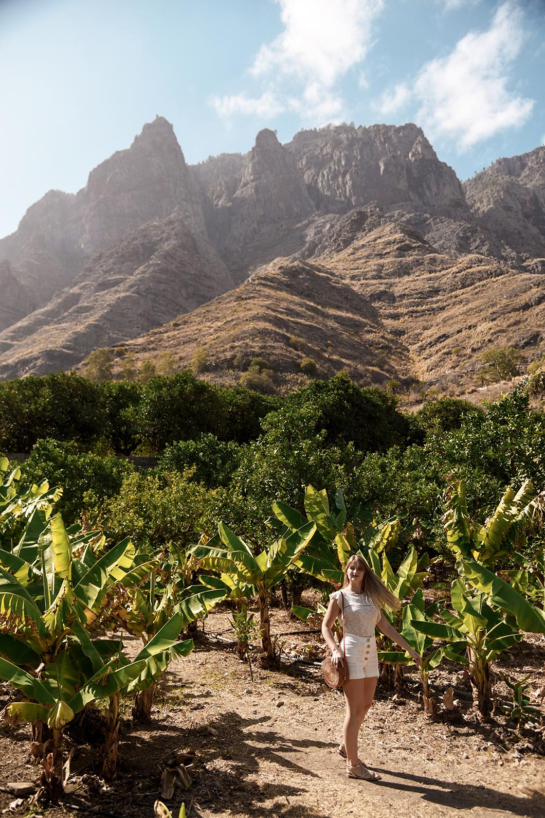 Visite de Finca la Laja à Agaete