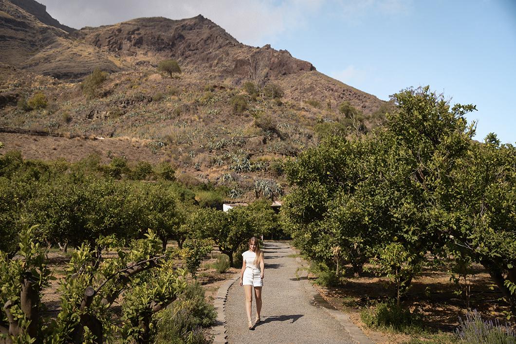 Finca la Laja, visite au nord de l'île de Grande Canarie