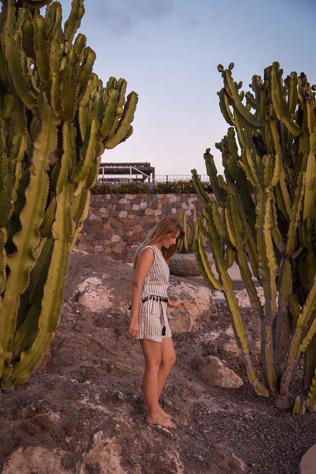 Les cactus de l'hôtel Salobre