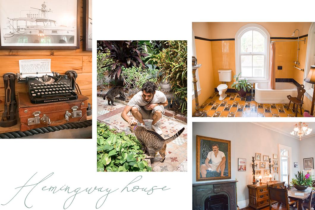 Visiter la maison d'Ernest Hemingway