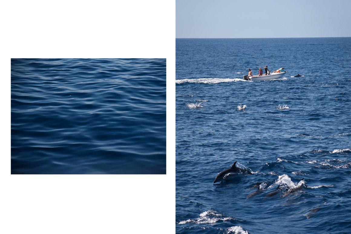 Sortie en mer avec Spirit of the sea