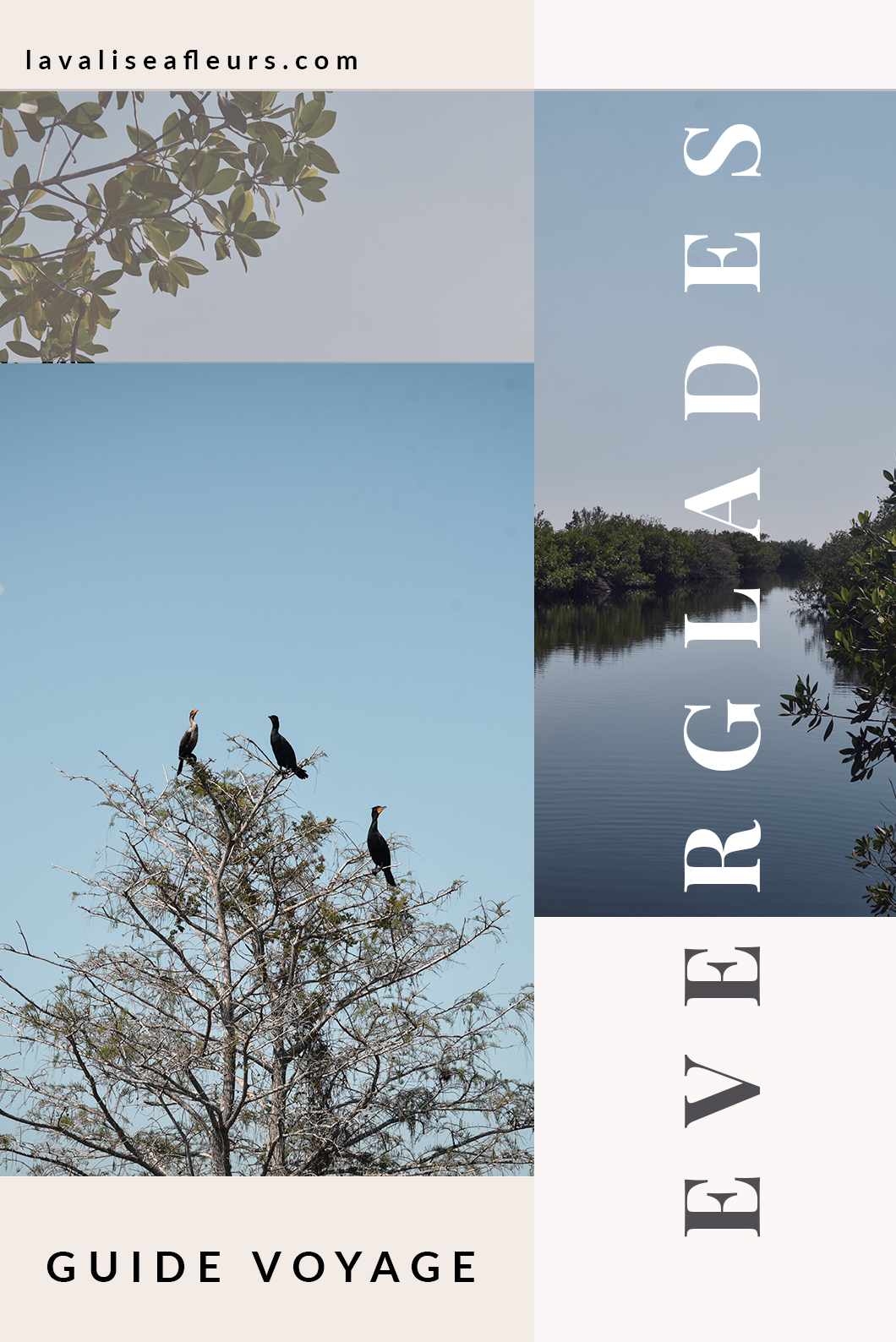 Guide des Everglades