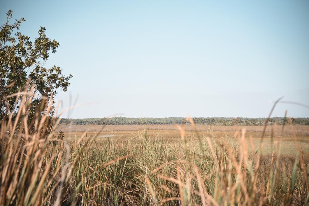 Découvrir Goodland - Côte ouest de la Floride