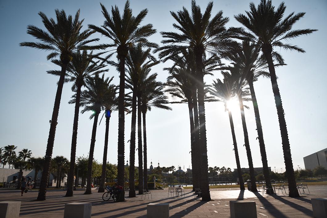 Découvrir Tampa en Floride