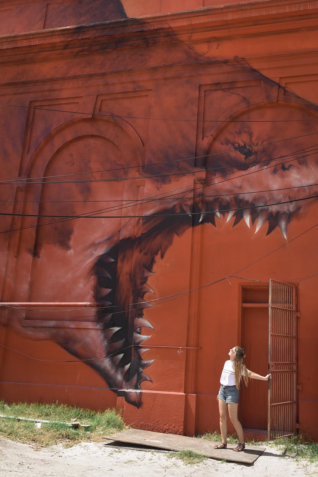 Découvrir le street art à Saint Petersburg sur la côte ouest de la Floride