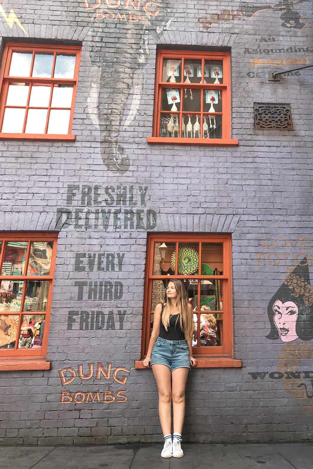 Décors de Harry Potter à Universal Studios Orlando