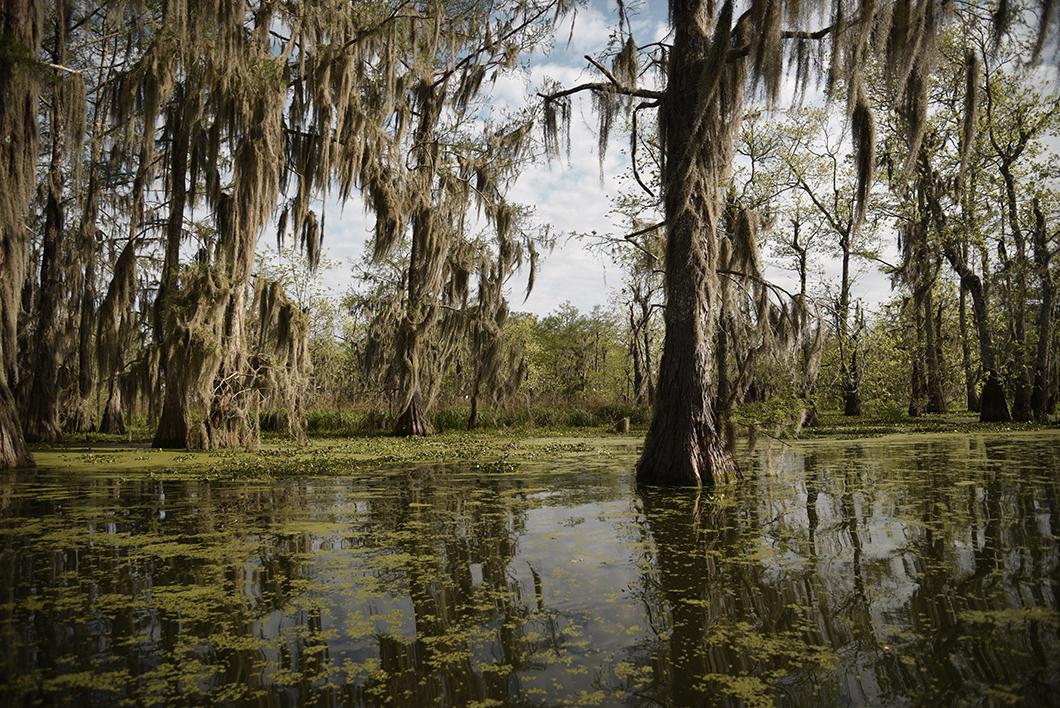 Faire du bateau en Louisiane
