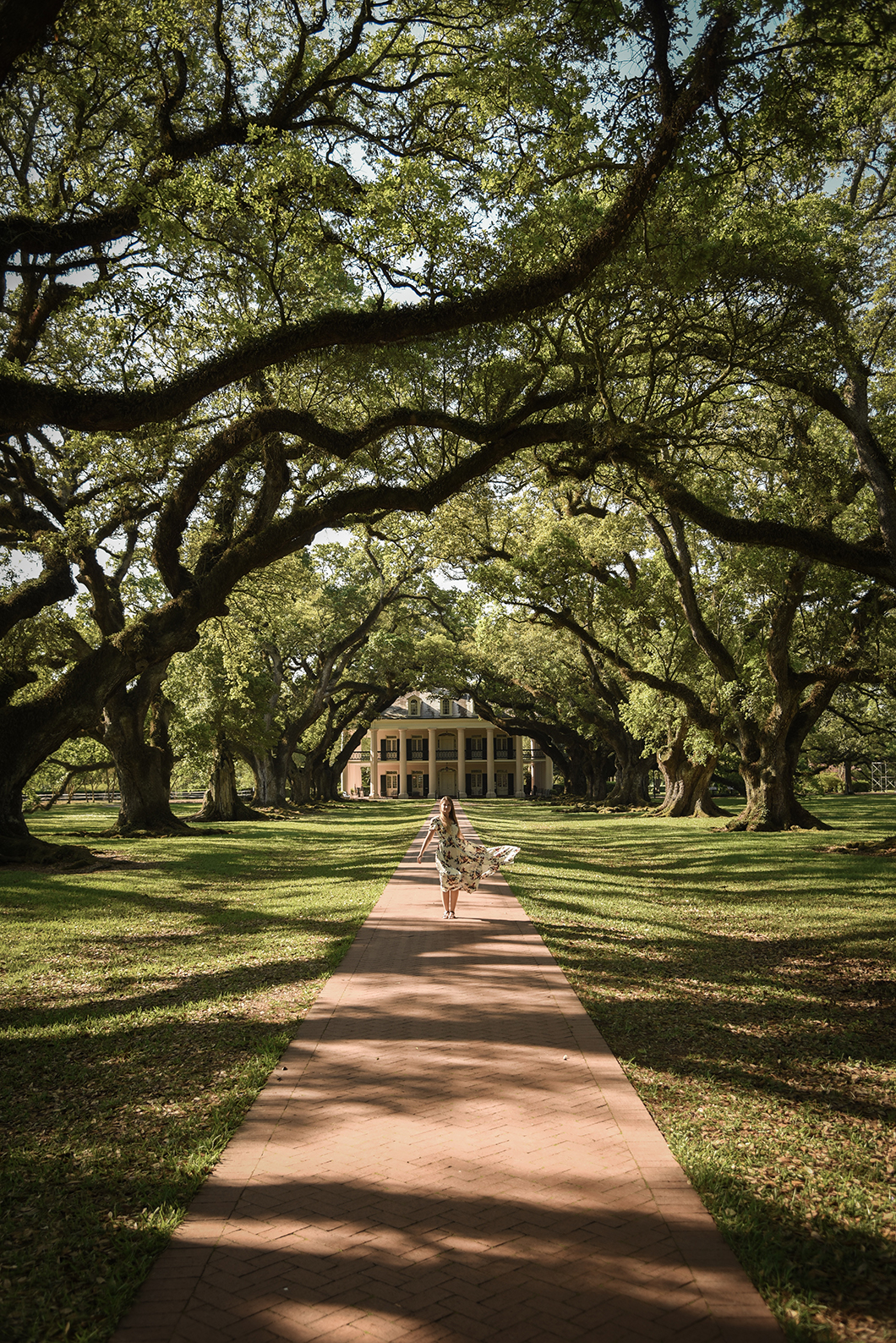 Visiter la Oak Alley Plantation