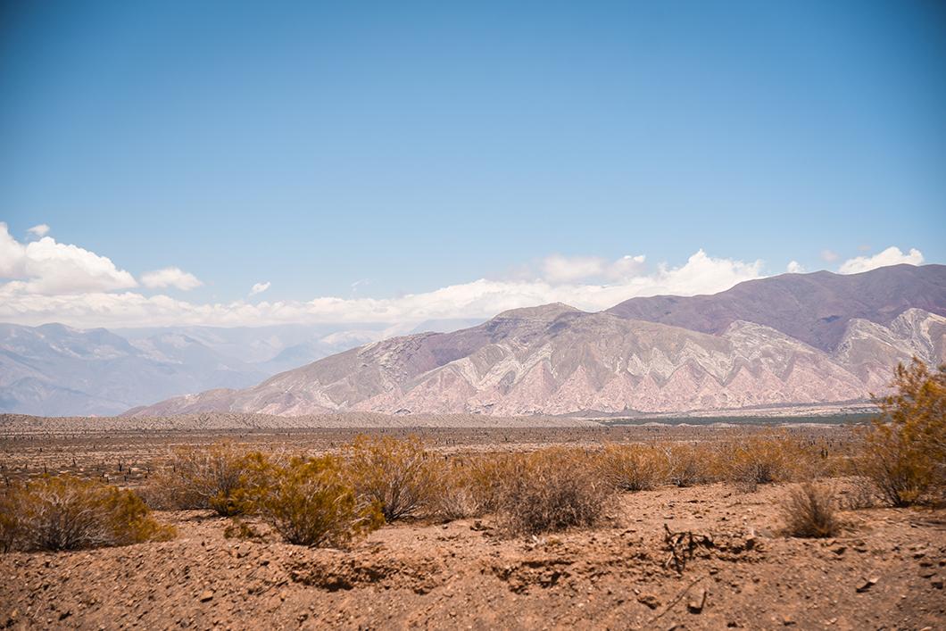 Parque national Los Cardones dans la région de Salta
